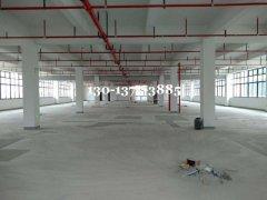 蓬朗独院8500平米 全新三层厂房出租