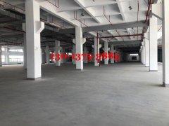 独栋三层4000平米厂房出租